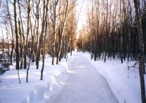 hiver22