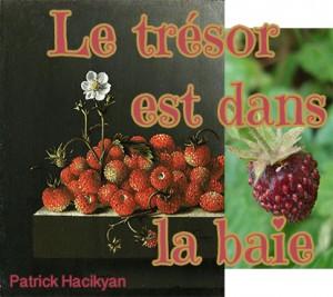 fraises et baies locales