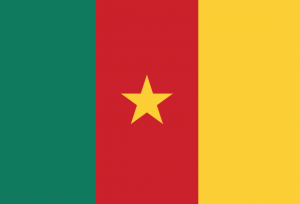 drapeaucameroun